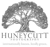 honeycutt photography logo